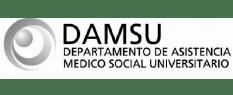 damsu-02